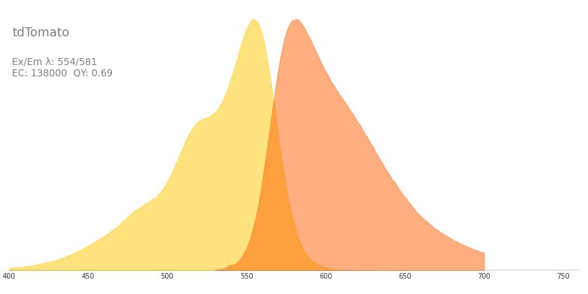 tdtomato    fluorescent protein database